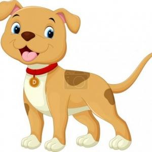 Upozornění na novelu zákona o veterinární péči